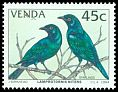 Cl: Cape Glossy-Starling (Lamprotornis nitens) SG 273 (1994) 100