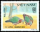 Cl: Emerald Dove (Chalcophaps indica) SG 410 (1981) 50