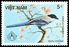 Cl: Azure-winged Magpie (Cyanopica cyana)(Out of range)  SG 968 (1986) 8
