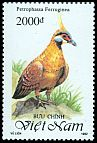 Cl: Spinifex Pigeon (Geophaps plumifera ferruginea)(Out of range and no other stamp)  SG 1729 (1992)  [11/6]