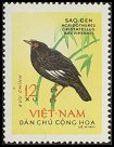 Cl: Crested Myna (Acridotheres cristatellus) SG 278 (1963) 80
