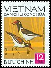 Cl: Red-wattled Lapwing (Vanellus indicus) SG 707 (1972) 20