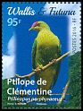 Cl: Crimson-crowned Fruit-Dove (Ptilinopus porphyraceus)(Repeat for this country)  new (2016)  [10/27]