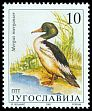 Cl: Common Merganser (Mergus merganser) SG 2682 (1991) 190