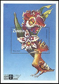 Zambia not catalogued (2005)