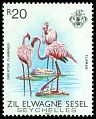 Cl: Greater Flamingo (Phoenicopterus roseus) <<Flaman>>  SG 68 (1983) 375